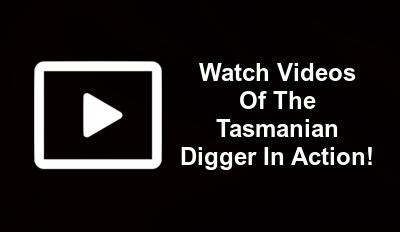 tasmanian digger videos